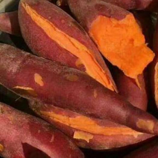 江西省赣州市龙南县 六熬地瓜 红薯
