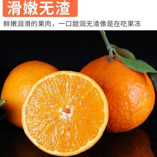 浙江省衢州市龙游县 红美人柑桔!正宗红美人,橘中皇后!