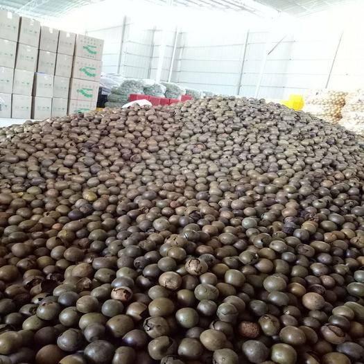 桂林七星区 𠂆家批发罗汉果养生清咽散装罗汉果