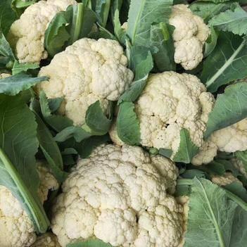有机花菜 松散 2~3斤
