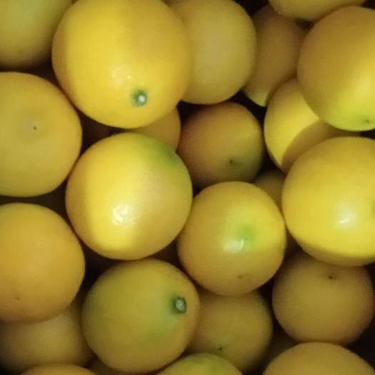 重庆万州 新鲜黄柠檬 土柠檬 皮薄汁多水果柠檬