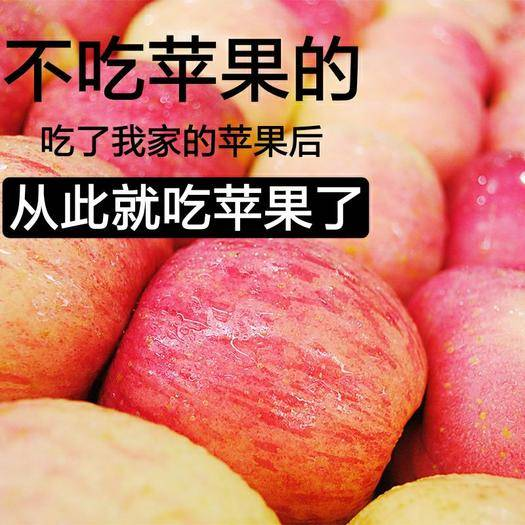 太原 (正常發貨)山西紅富士蘋果新鮮現摘脆甜多汁10斤包郵