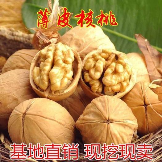 平邑县 核桃树苗纸皮薄皮核桃苗地栽当年结果南方种植北方种植包邮