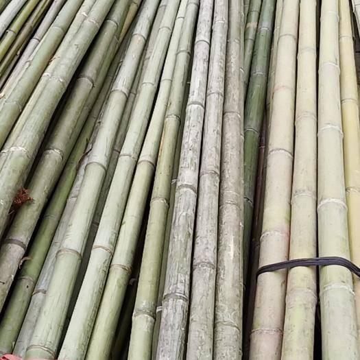 衡阳县菜架竹 大量供应各种规格竹条,价廉质优
