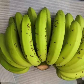 云南高山香甜大香蕉花皮蕉,斑点蕉,带箱10斤包