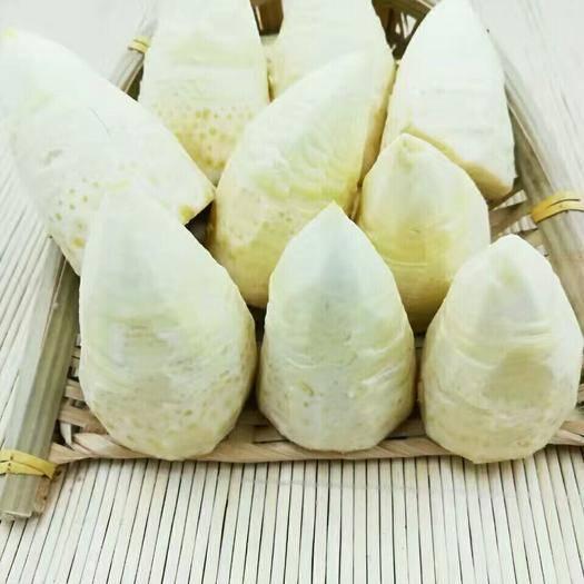 福建省漳州市南靖县 冬笋大量现货接单,14.5秒发