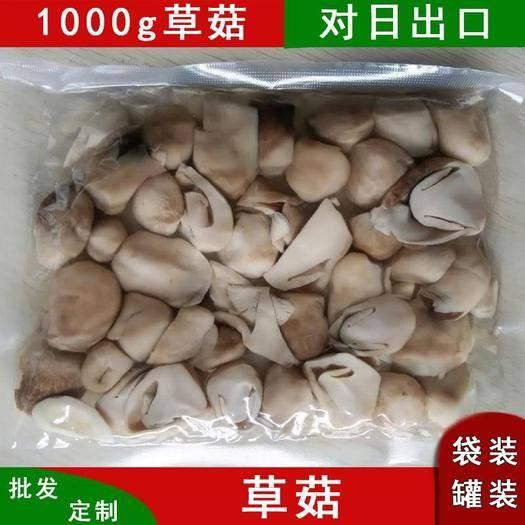 福建省南平市建阳区 人工种植新鲜草菇2cm鸡蛋型清水食用菌批发餐饮工厂