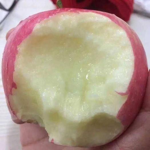 稷山县 山西丑苹果  10斤起包邮 味道香甜多汁 量大优惠