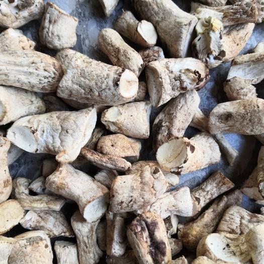 龙岩漳平市香菇脚 可以供应到明年3月份,现在开始算起