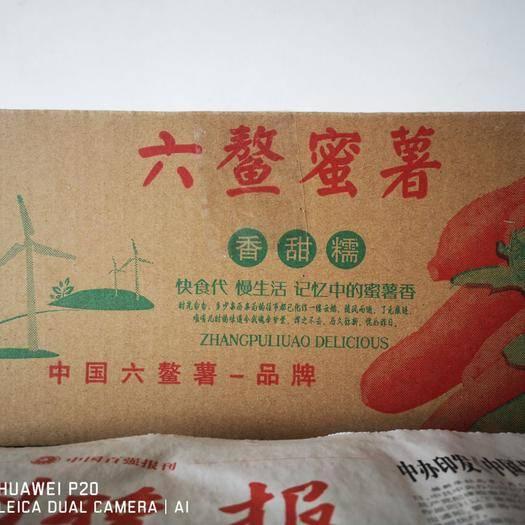 漳浦縣六鰲地瓜 六鰲蜜薯大量供應支持一件代發
