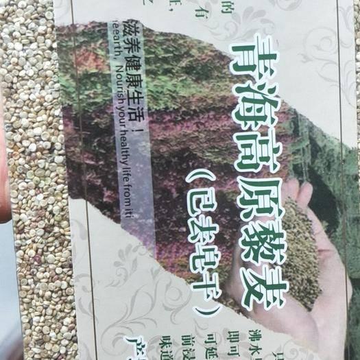 格爾木市白藜麥 青海格爾木高原黎麥