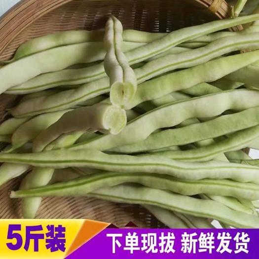 潍坊寒亭区 新鲜蔬菜白芸豆九粒白扁豆四季豆5斤