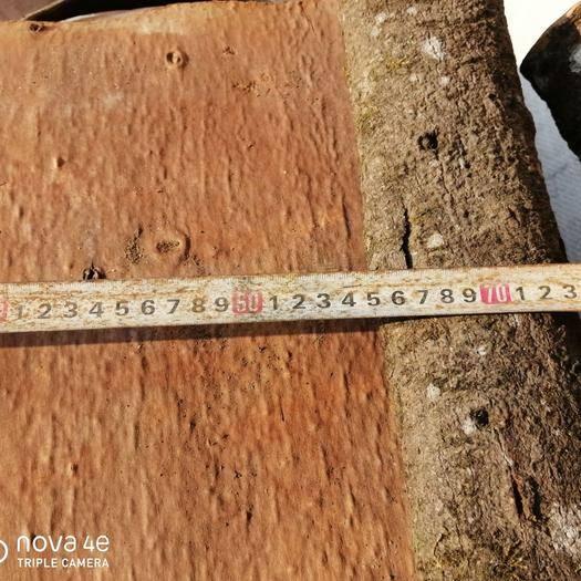 平南縣板桂 刮皮,0.3-----0.4公分。