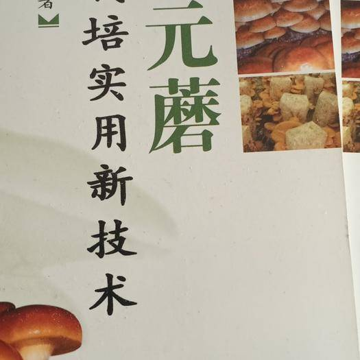 沈阳法库县 元蘑,滑子菇栽培技术68包邮