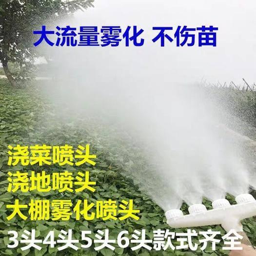 广东省广州市南沙区 大棚浇地喷头雾化不商苗