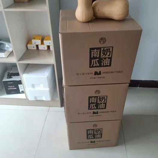 广宗县 微黄色的小南瓜,面甜适口,籽少好吃