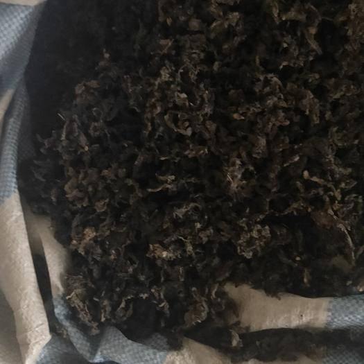 宁夏回族自治区银川市西夏区地皮菜 土少,易清洗,泡发率高。口感甚好