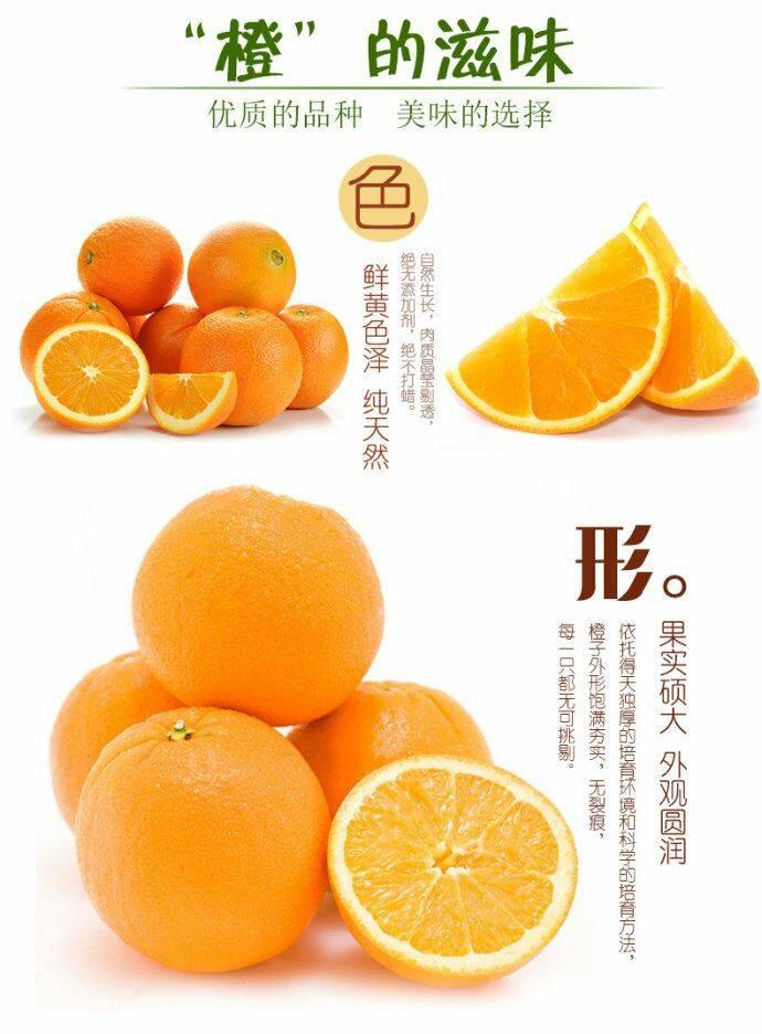 [现摘现发]正宗湖南永兴冰糖橙5斤当季水果孕妇水果批发包邮