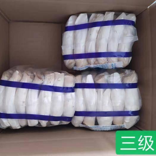 陕西省咸阳市杨陵区鲜杏鲍菇 质优价廉,长期供应