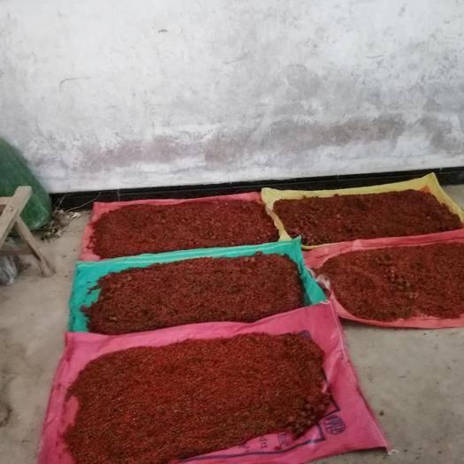 赣州赣县区 江西粉防己种子,全红鲜籽 干籽均有。