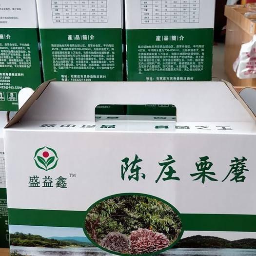 石家庄灵寿县 栗蘑