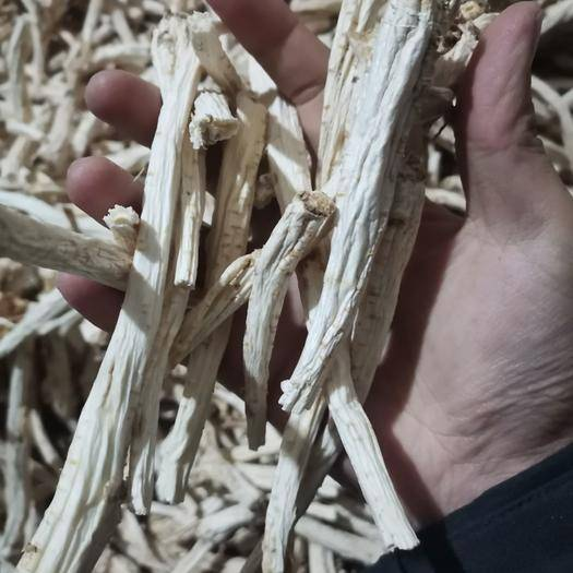 商洛商州區 2020年新產去皮選條桔梗