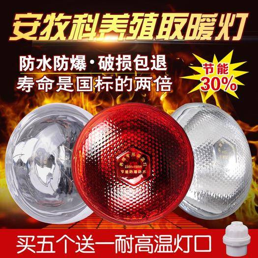 石家庄新乐市太阳能灯 养殖保温灯防水防爆养鸡养猪220伏用电加温灯100w