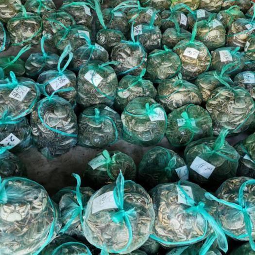 南京 大闸蟹精品