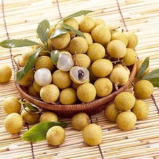 平和縣 泰國進口龍眼新鮮當季水果鮮桂圓整箱應季3斤5斤 批發