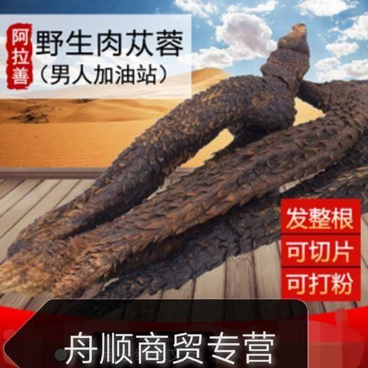安國市肉蓯蓉 內蒙古油蓯蓉 肉質好(秋貨) 20/30/35公分長一斤包郵