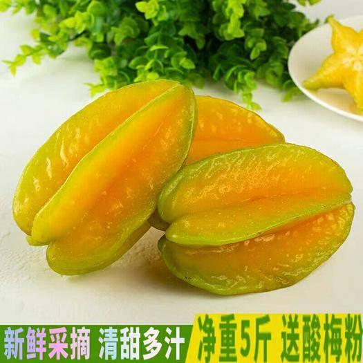 漳州平和縣 楊桃,福建漳州楊桃水果包郵新鮮當季應季整箱洋桃陽桃