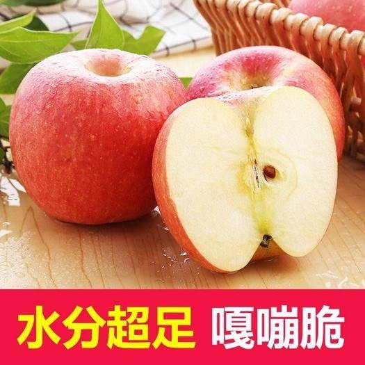 安陽 特價包郵新鮮現摘紅富士蘋果脆甜冰糖心5/10斤整箱