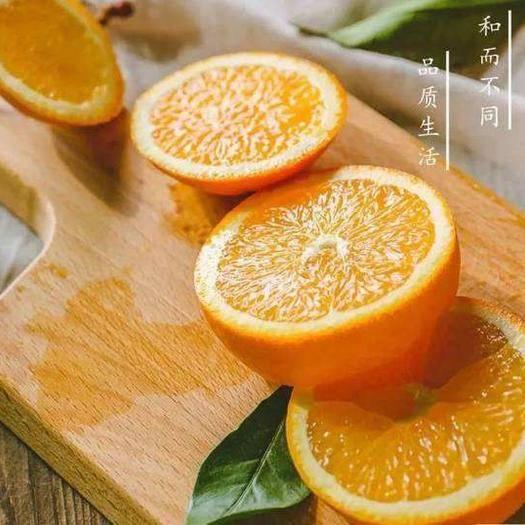 赣州寻乌县 包邮20斤装赣南脐橙寻乌甜橙子大果新鲜水果香甜多汁礼品