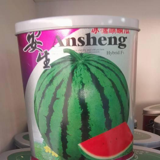 成都成华区冰糖麒麟王西瓜种子 冰糖麒麟西瓜 (8424)抗病