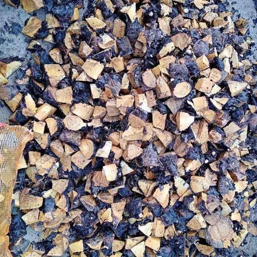 恩施土利川市大黄种子 供应马蹄大黄种苗块茎芽头大黄芽头种苗块茎