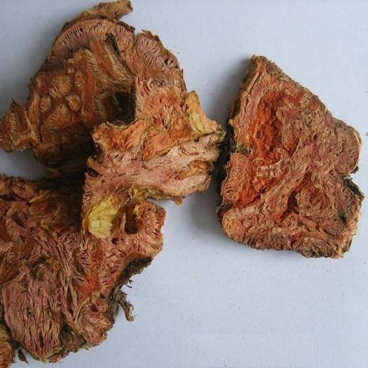 成都金牛區 西藏產地中藥材紅景天川紅景多個規格品種一斤起售