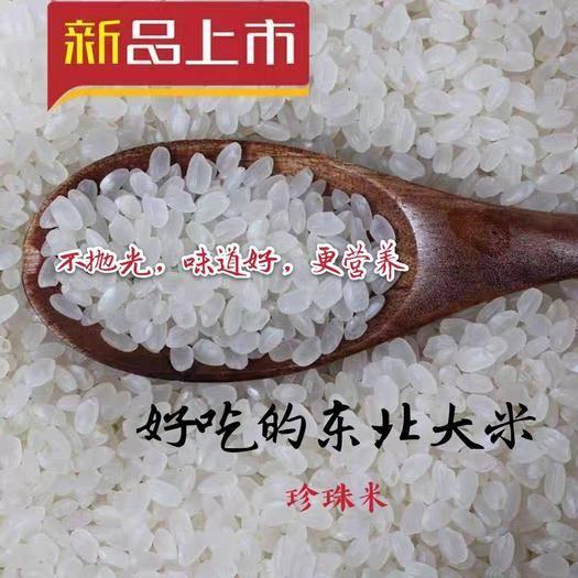 黑山縣 東北大米 當年新米 黑龍江珍珠米 支持一件代發 口感好