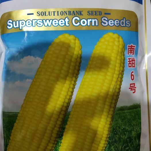 武漢武昌區甜玉米種子 泰系甜玉米,大棒可達1.8斤,好吃好賣