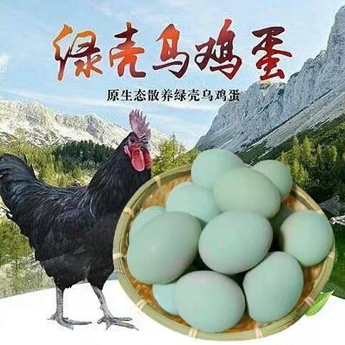 商丘虞城县 农家散养绿壳鸡蛋30枚一箱,一箱起发。营养健康