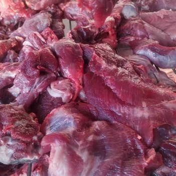 猪瘦肉 精修瘦肉,全瘦肉质量好,鲜冻瘦肉