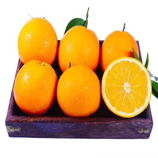 成都蒲江县 新鲜现货橙子四川金堂脐橙当季时令水果10斤包邮多规格