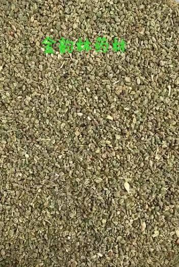 保定安國市芹菜籽 (藥用)產地河北 干凈無雜 平價直銷 袋裝包郵