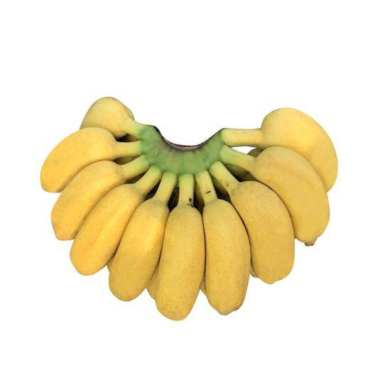 南宁 【泡沫箱精装】广西 小米蕉小鸡蕉/米蕉/小香蕉芭蕉