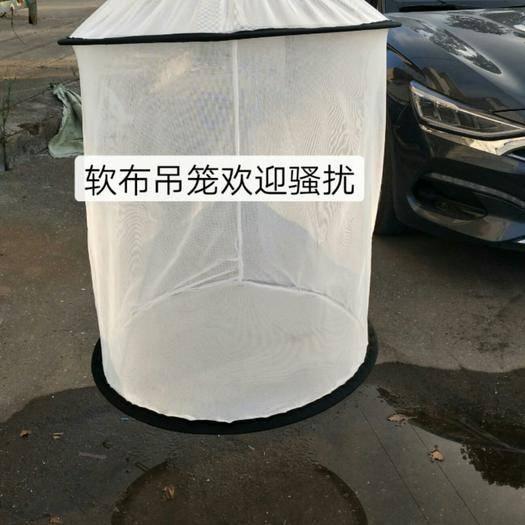 臺州溫嶺市 水蛭[軟網籠]