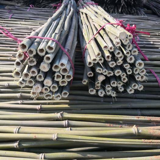衡陽耒陽市 菜架竹,新鮮靚貨供應,各種規格齊全。