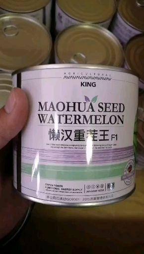 商丘夏邑县 懒汉重茬王西瓜种子  甜度高 大红瓤