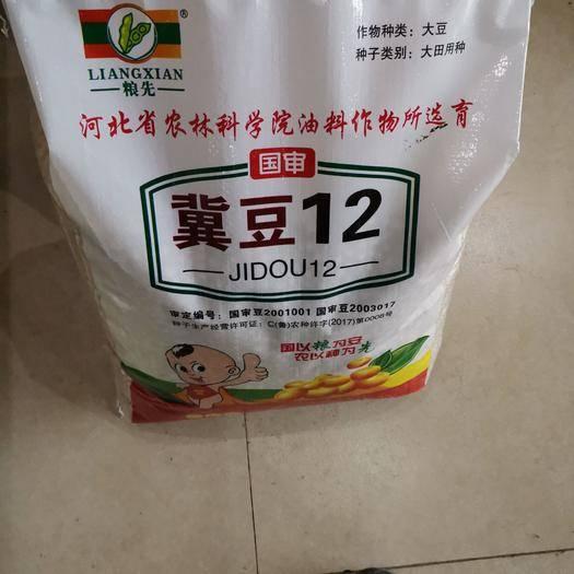 嘉祥县 高产高蛋白大豆种子