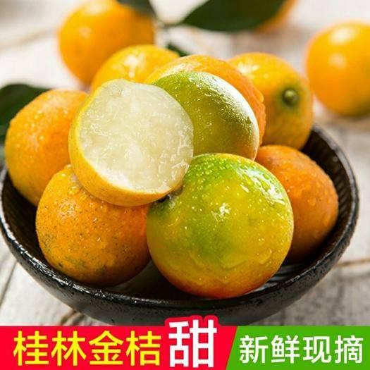 南宁上林县 广西桂林脆皮金桔子现摘清香甜 腻绝无酸味滑皮金橘子皮薄肉厚