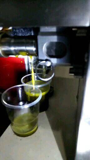 漢中勉縣 漢中優質高油率油菜籽