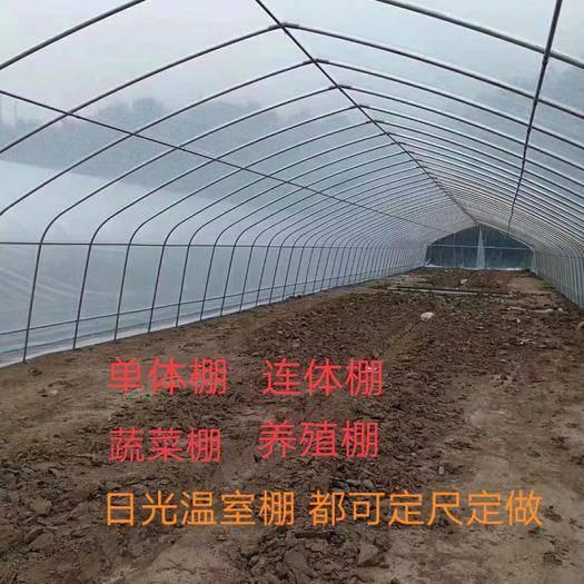 天津钢管大棚 蔬菜大棚 养殖棚 现场加工 定尺定做 生产 质量保证